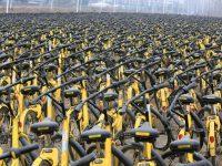biciclette ofo