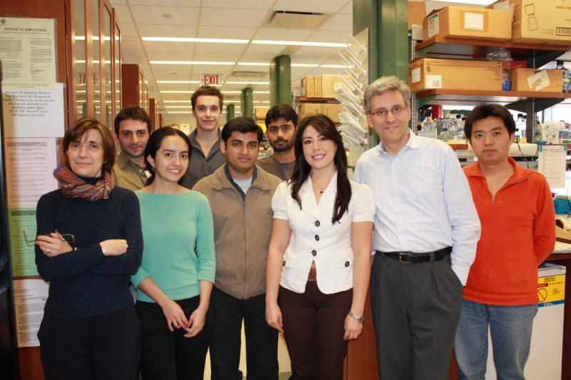 Il team di lavoro di Iavarone