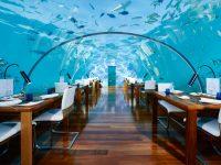 acqua pesci vetro sedie