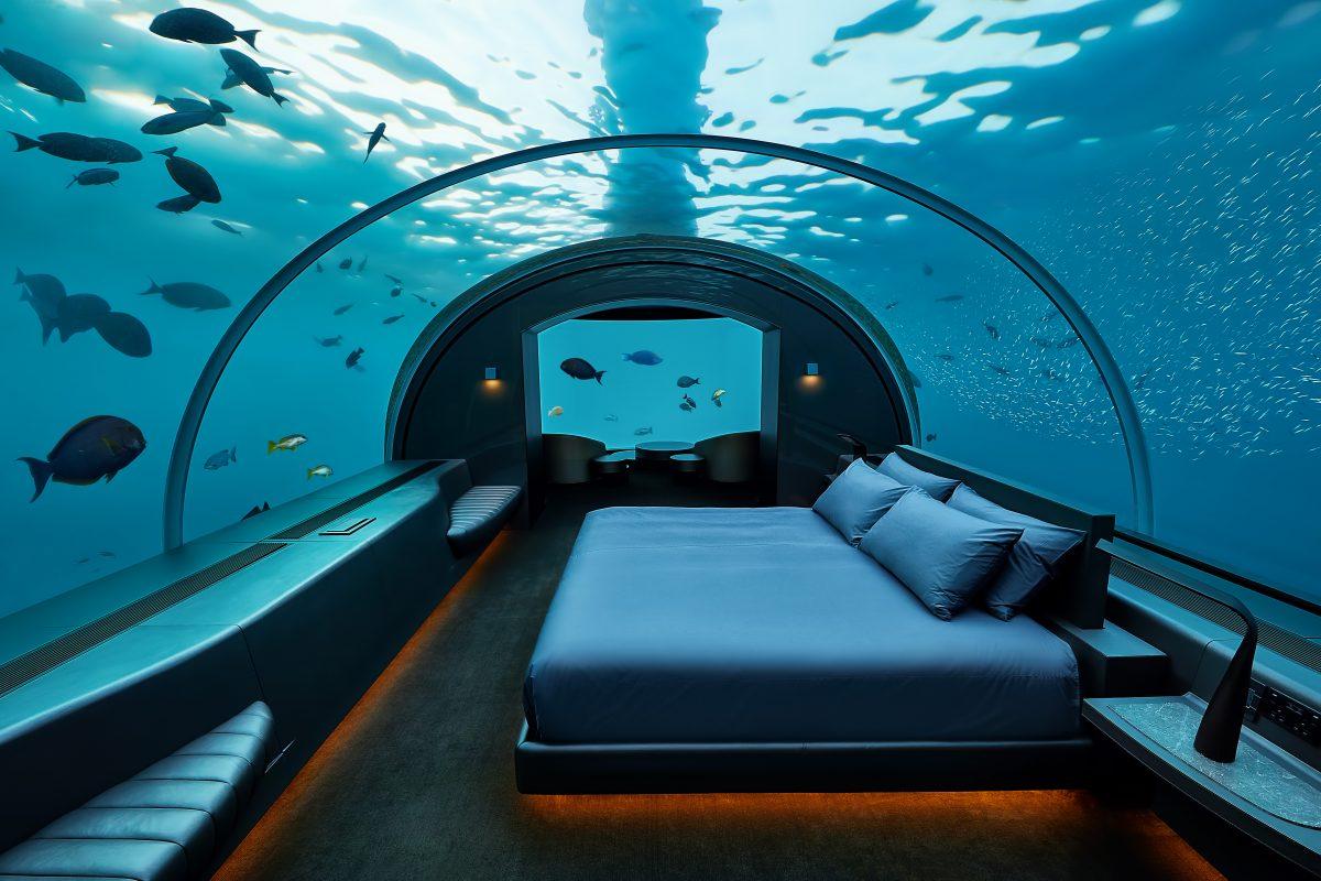 letto vetro acqua pesci
