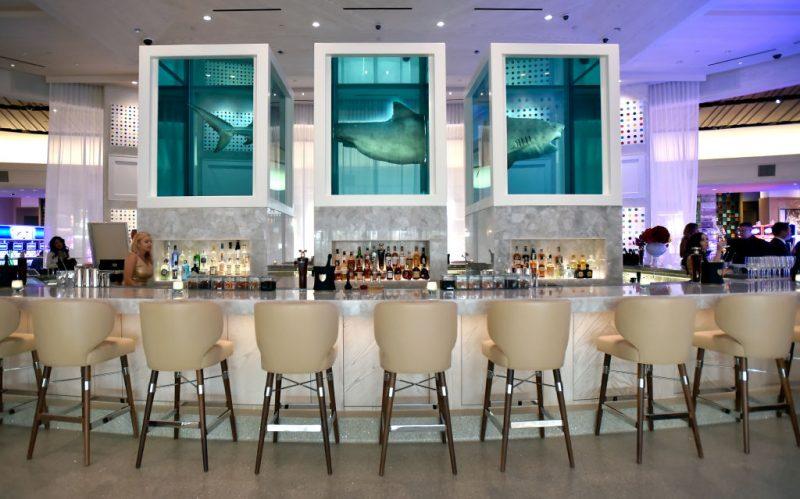 sedie squali acqua tavolo