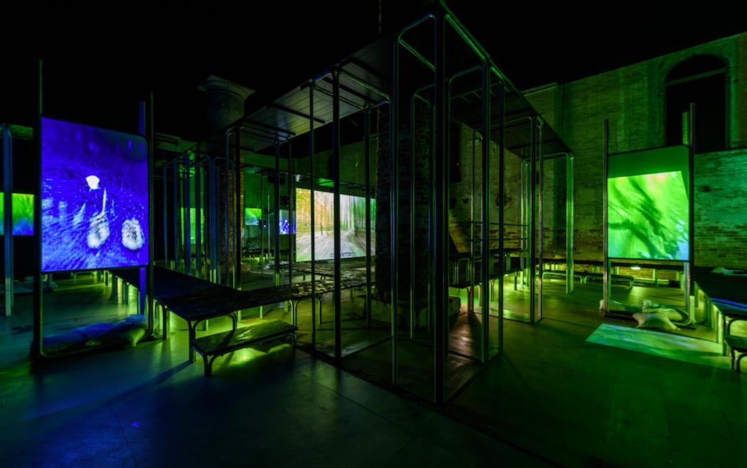 installazione verde luci
