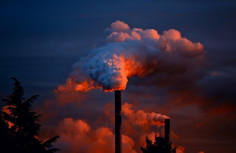 Cambiamento climatico: come combattere il riscaldamento globale