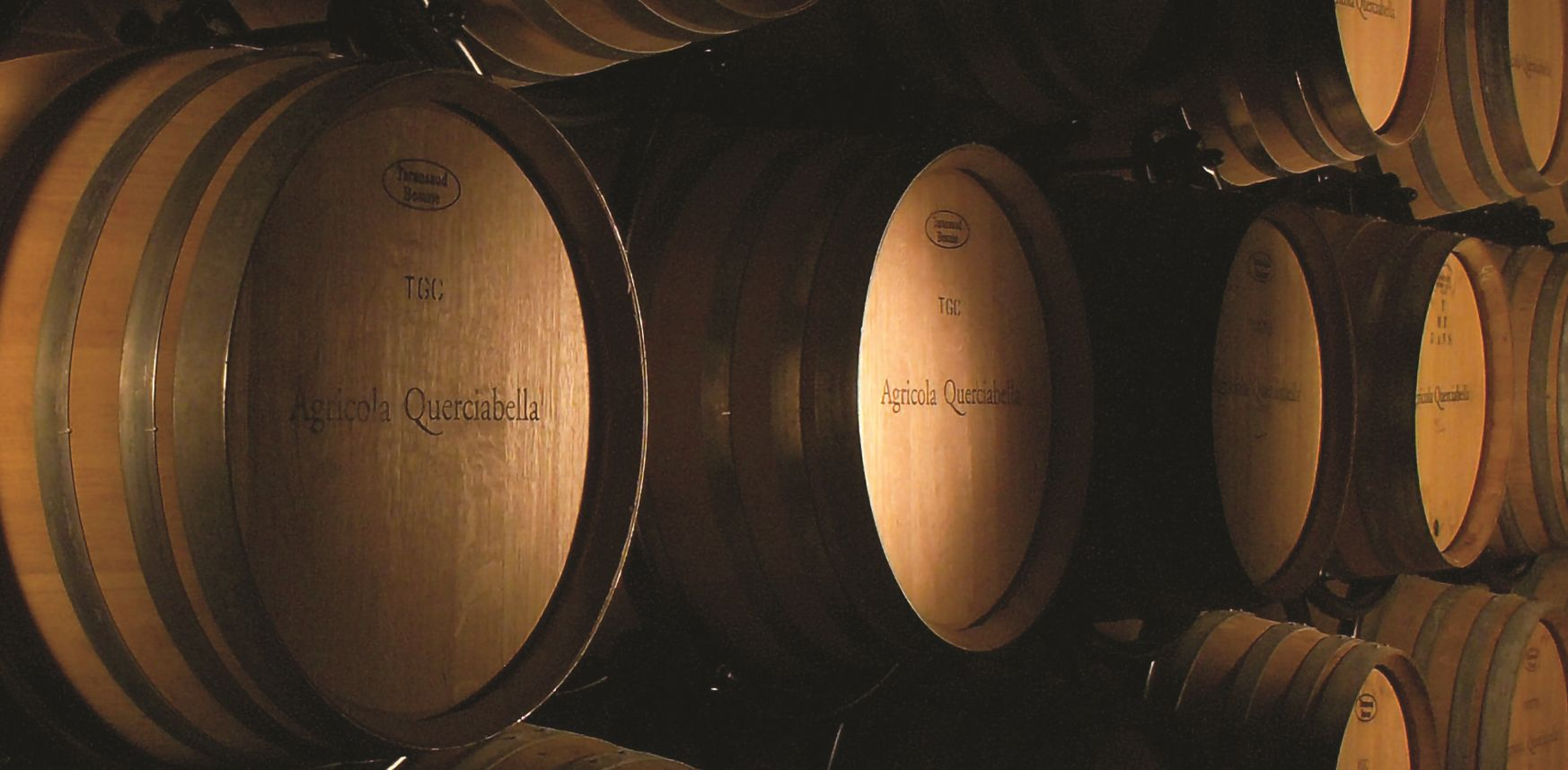Migliori vini italiani: Querciabella tra le 100 Eccellenze Italiane di Forbes