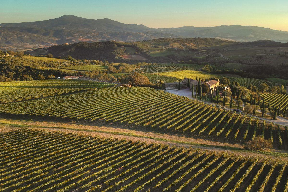 Migliori vini italiani: San Polo tra le 100 Eccellenze Italiane di Forbes
