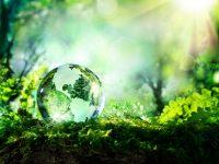 sostenibilità - csr - Corporate Social Responsibility