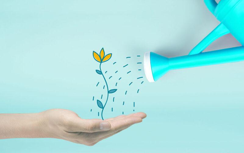 Advalor - consulenza strategica personalizzata