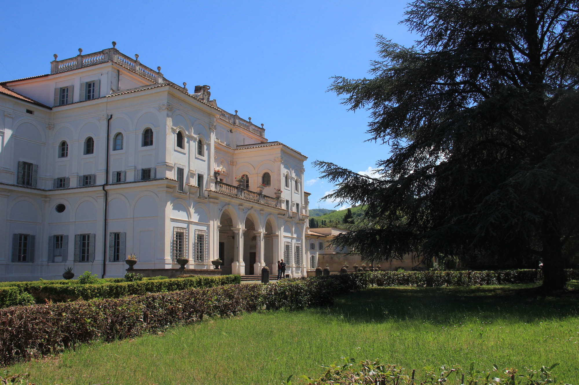 Accademia Vivarium novum