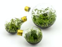empower the future, energia