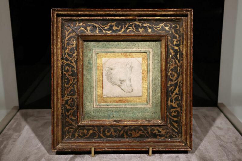 Leonardo Da Vinci Testa orso